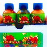 gift box of aromatherapy oils