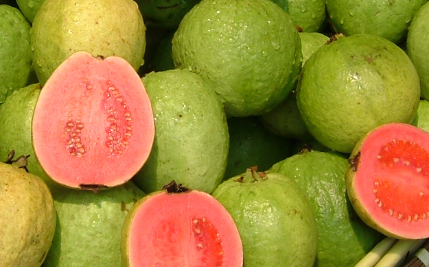 Organic Guava Seed Oil