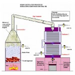 Essential Oils Distillation