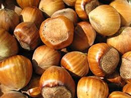 buy hazelnut oil