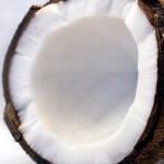 super cropped coconut-1125 (2)